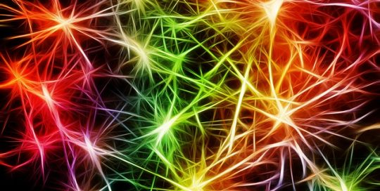 nerve-cell-network-brightly-coloured